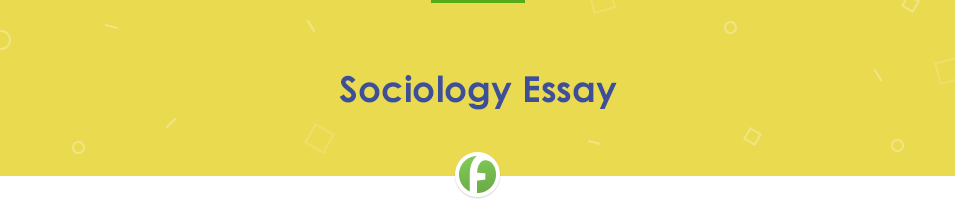 Sociology Essay Example